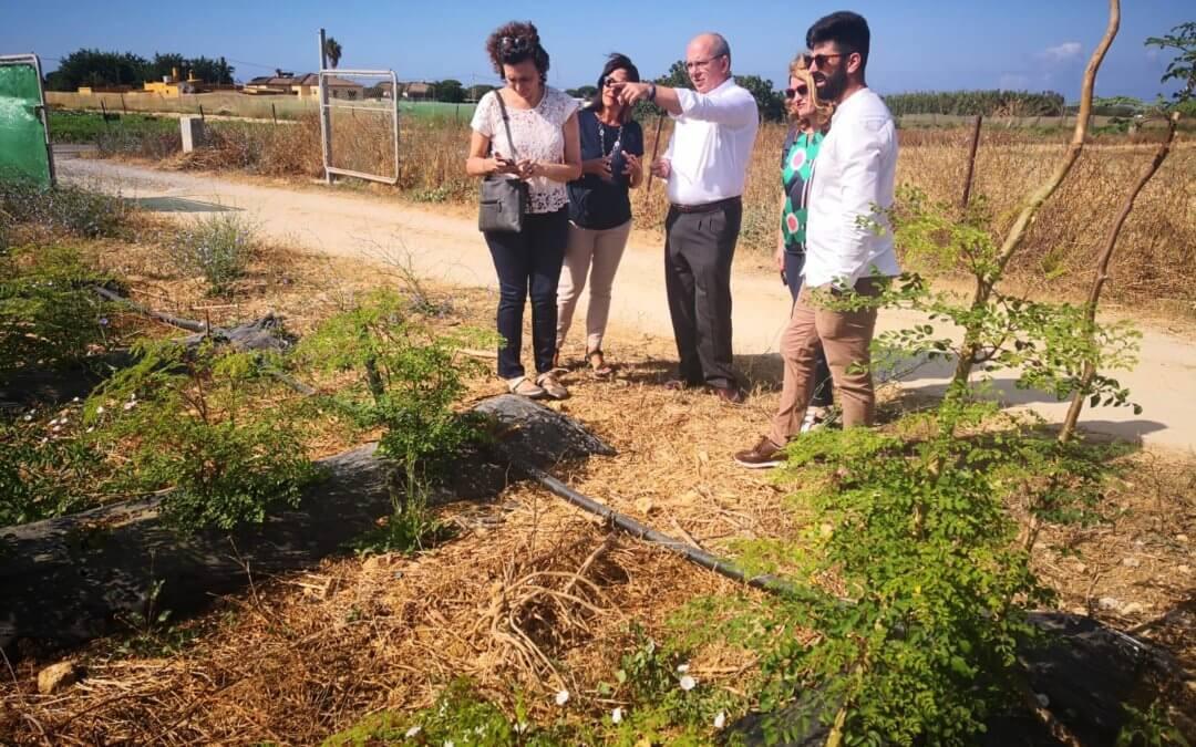 Presidente de la Confederación de Empresarios de Cádiz visita Connatur