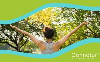 Moringa. 10 Propiedades que ayudan a tu cuerpo.