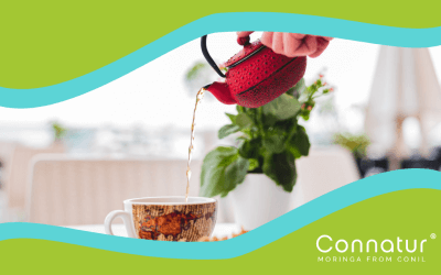 Beneficios de los tés de Moringa